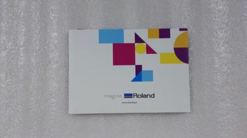 video card roland